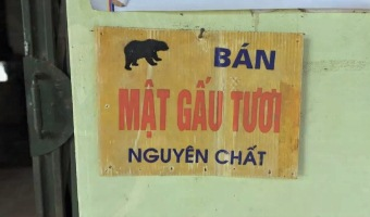 Sign advertising bear bile