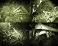 2014e_NEWS-Cac-Co-Cave_114x90