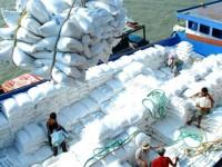 Vietnamese rice export