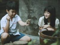 Image from Hoa Vang Tren Co Xanh