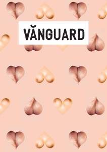 Vănguard, Issue 2