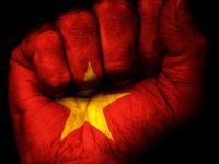 Fist flag